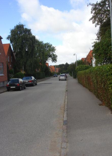 Asser Riigsvej og Fru Ingesvej