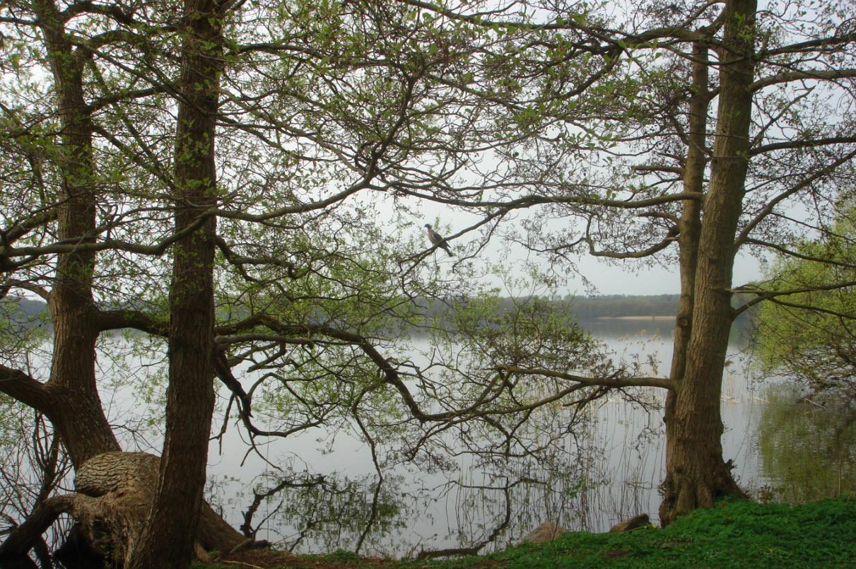 Sorø sø
