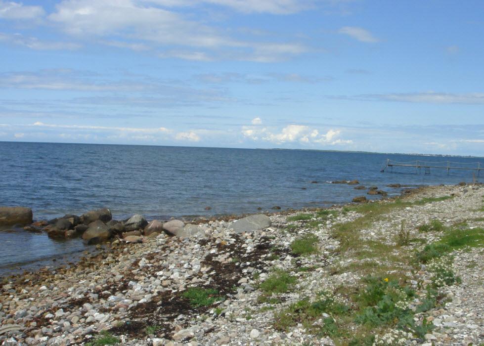 Strand og vand