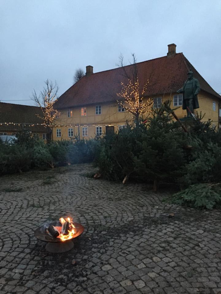 Juletræssalg på Torvet