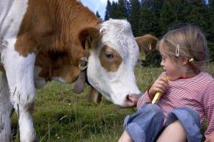 ©Bettina Brinkmann/MAXPPP, Allemagne,Baviere, /2005/08/09 - ILLUSTRATION enfant et animaux vache, Brauneck en Baviere ****AUTORISATION OK****
