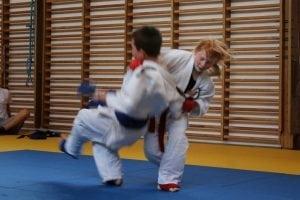 ju jitsu artikel (2)