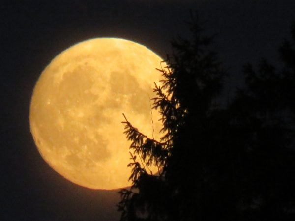 Supermånen