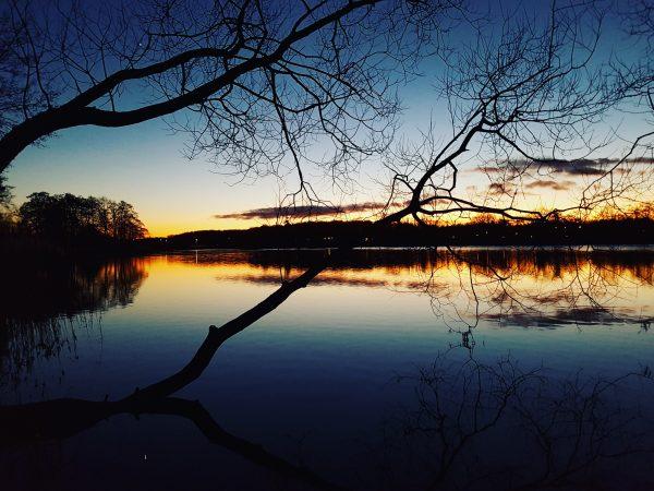 Skønhed ved søen