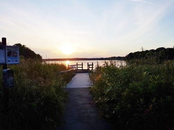 Sommer ved søen