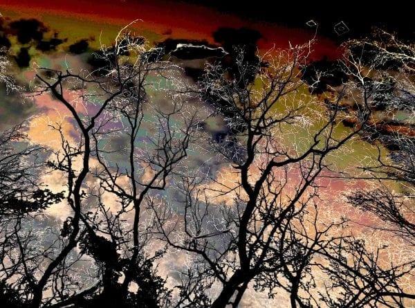 Kunstfoto af TobyO i Galleri Soli