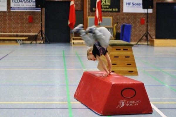 Job hos Sorø Gymnastikefterskole?