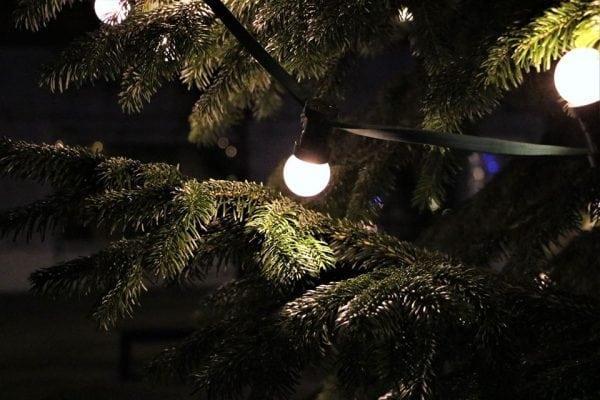 Juletræet i Alsted-Fjenneslev tændes