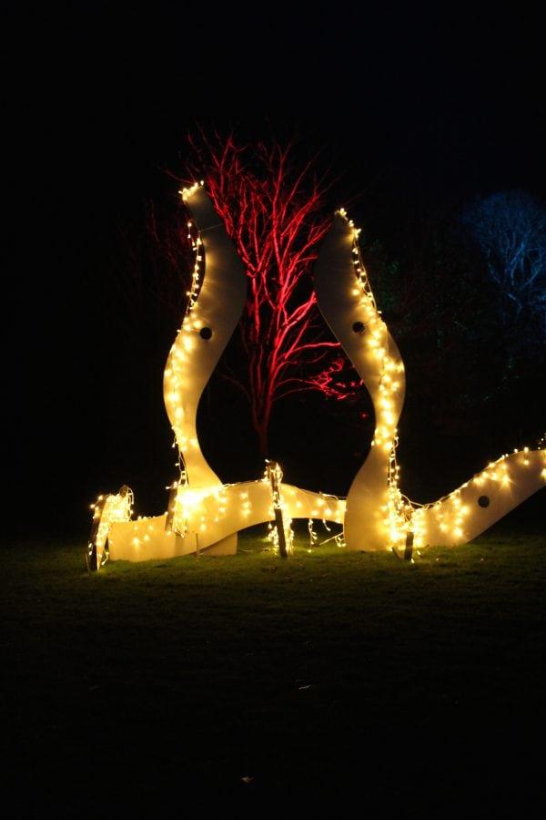 Besøg en forunderlig julehave