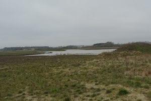 DN Sorøs klage over manglende landzonetilladelse på Hestehavevej 6