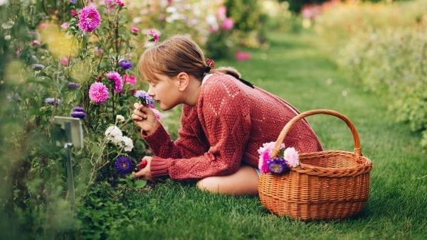 Skal Midtsjællands Planteskole hjælpe dig med duftende planter til din have?