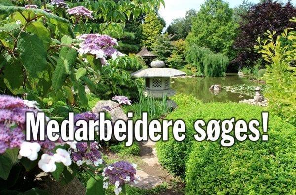 Birkegårdens Haver søger to medarbejdere til den kommende sæson