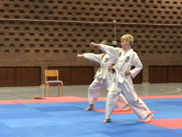 Sorø Taekwon-Do Klubs forårsstævne