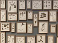 Nyerhvervelser på Sorø Kunstmuseum
