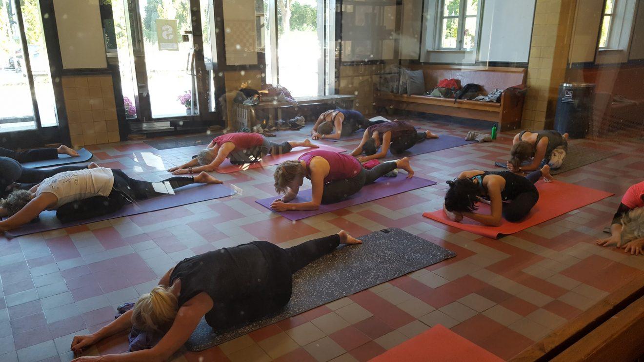 Yoga på stationen- begynderforløb