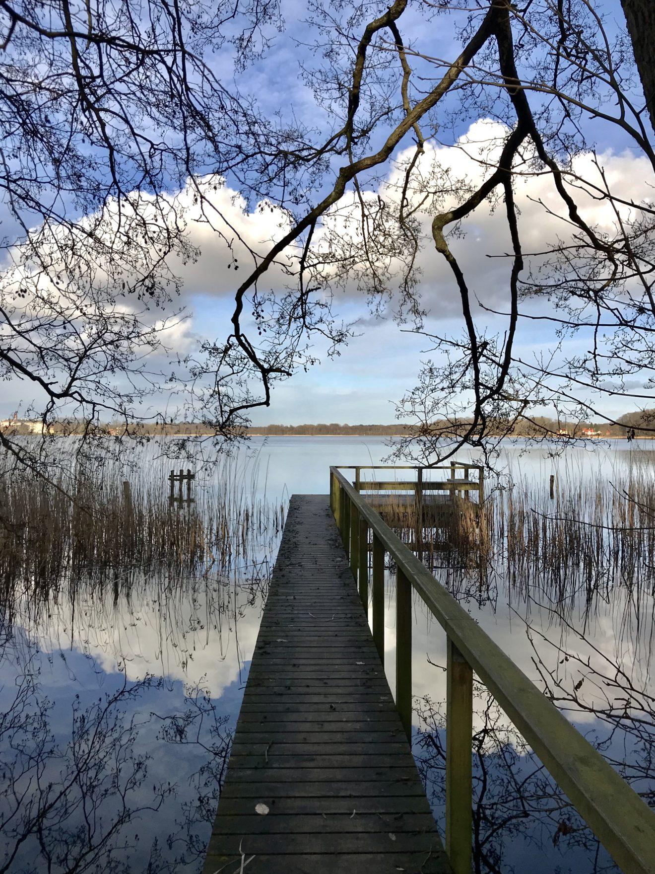 Forår ved søen