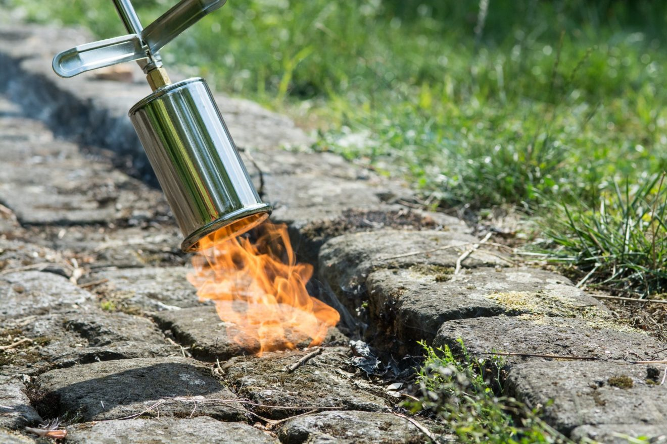 Pas på med ukrudtsbrænderen