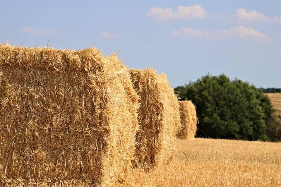 Høstgudstjenester 27. september